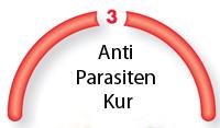 Bild:Schritt 3: Anti-Parasiten-Kur